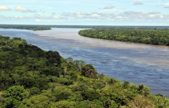 Amazon rainforest Brazil