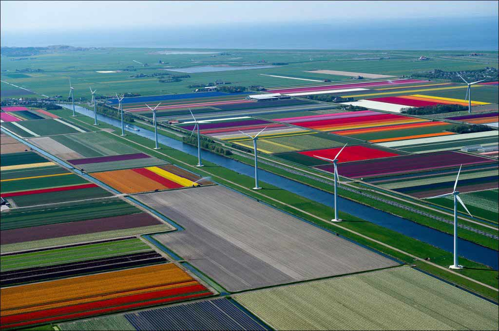 Flower Route Netherlands