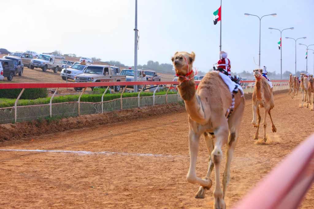 Al Sawan Race Track