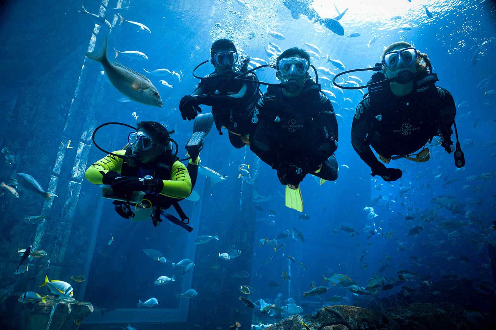Best Things to do at Atlantis the Palm Dubai- A luxurious ...