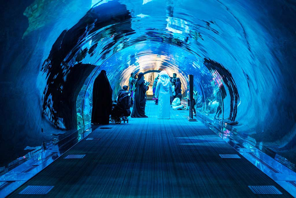 The Dubai Aquarium and underwater zoo