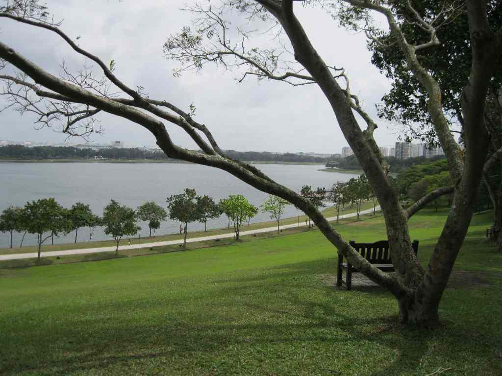 Bedok Reservoir Singapore