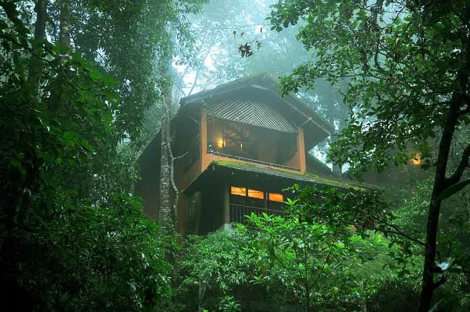 Tree House in Kerala