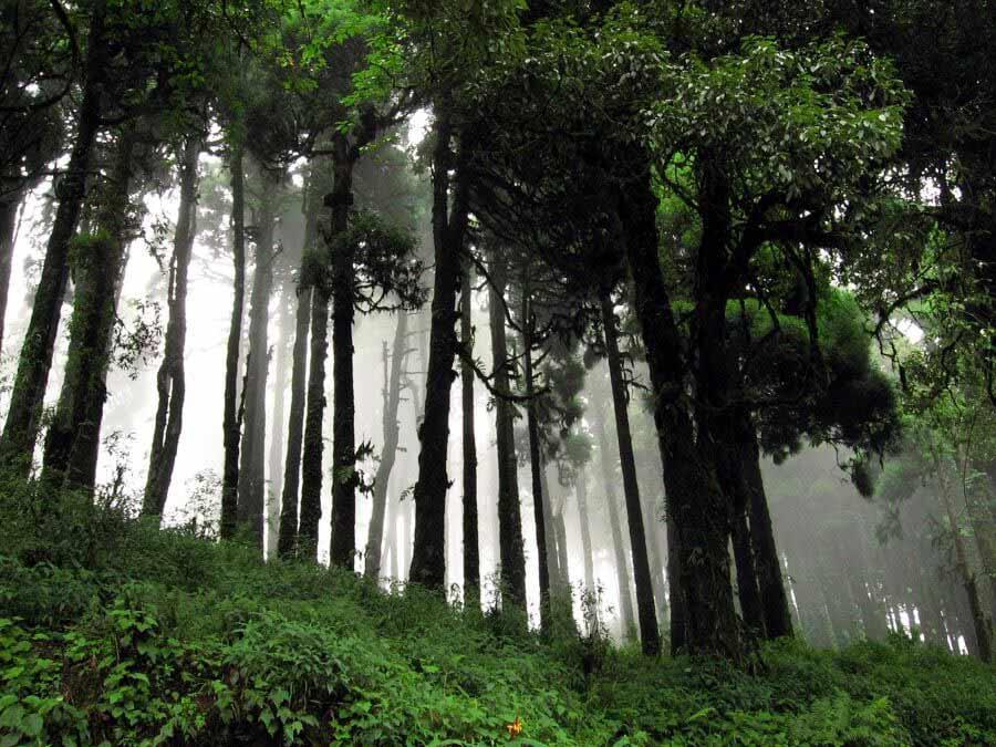 Lepchajagat West Bengal